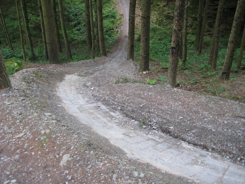 Gorlech Mountain Bike Ride